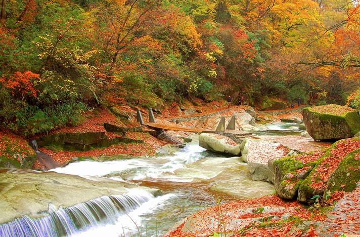 光雾山十八月潭看红叶彩林111尽早脱光图片