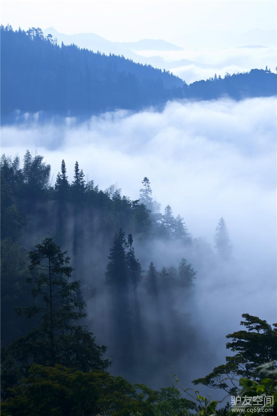 5小时), 黔江转s232公路前往中国中西部最大的原始森林部落——坪坝营